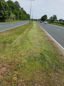 A freshly cut grassed central reservation on the A46.
